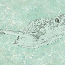 Turtle Underwater by Marshal James