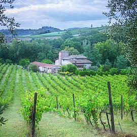 Tuscany Italy Farmhouse by Joan Carroll