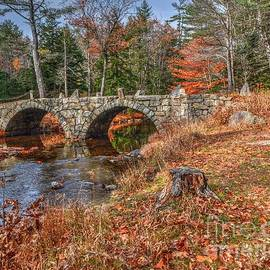 Twin Arch Stone Bridge by Steve Brown