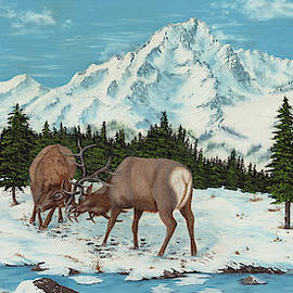 Two Fighting Elk by Paul - Phyllis Stuart