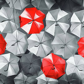 Umbrella Canopy Black White and Red by Carol Japp