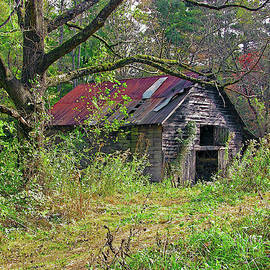 Uncle Henry's Barn by Randall Dill