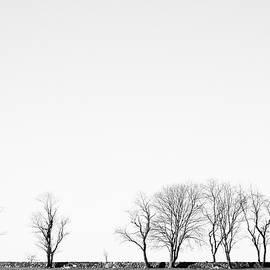 Under A Winter Sky by Nancy De Flon