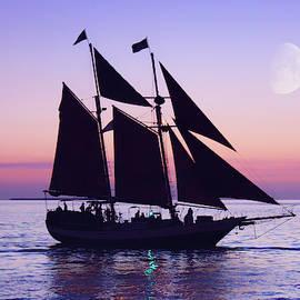 Under Full Sail by Iryna Goodall