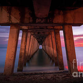 Under Sharky's Pier in Venice, Florida by Liesl Walsh