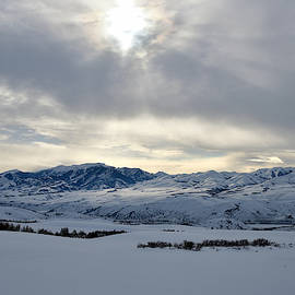 Under Winter's Grip  by Michael Morse