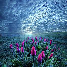 Unequal to Our Gifts by Phil Koch
