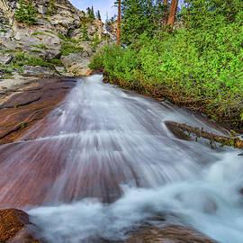 Unique Cascade by Leland D Howard