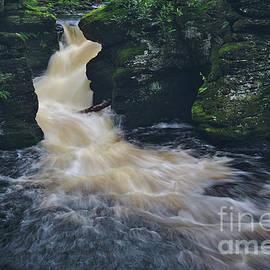 Upper Canyon at Bushkill Falls by Dale Kohler