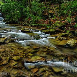 Upper Falls In Spring by Thomas R Fletcher