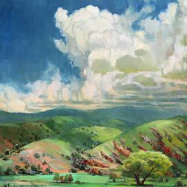Utah Spring by Steve Henderson
