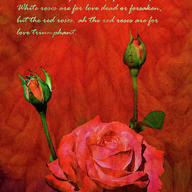 Valentines Day Roses 1  The Power of Love by Linda Brody