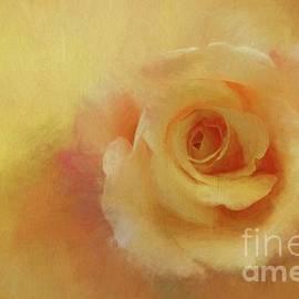 Valentine's Rose by Eva Lechner