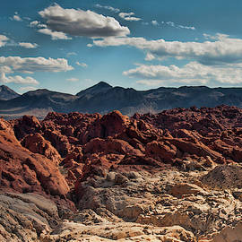 Valley Of Fire Rugged Colors by Daniel Adams