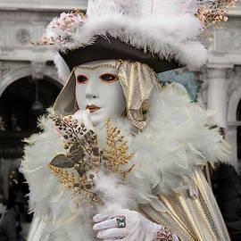 Venetian Mask 2019 001 by Wolfgang Stocker
