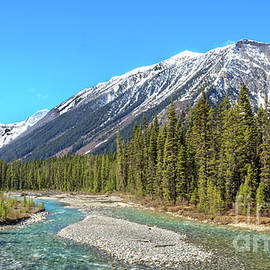 Vermilion River In The Canadian Rockies by Robert Bales