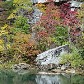 Vibrant Riverbank