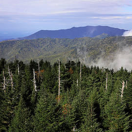 View From Clingman's Dome Observation Tower 1 by Judy Vincent