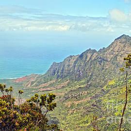 View from Kalalau Lookout, Kauai by Catherine Sherman
