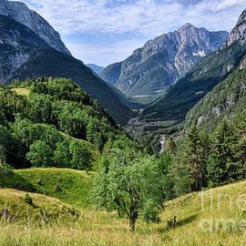 Summer Meadows in the Predil Pass by Norman Gabitzsch