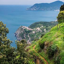 View of Corniglia Cinque Terre Italy II by Joan Carroll