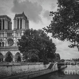 View of Notre Dame from Across the Seine River 2016 by Liesl Walsh