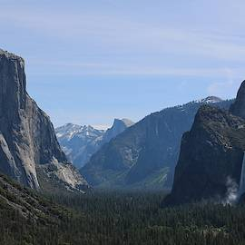 View Of Yosemite Valley  by Christy Pooschke