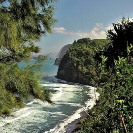 View to Pololu Beach by Heidi Fickinger