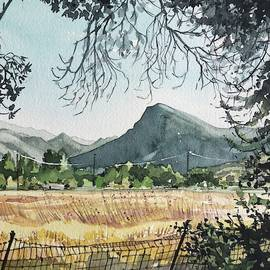View to Sugarloaf Mountain from Reagan Ranch by Luisa Millicent