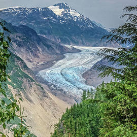 Viewing The Salmon Glacier  by Robert Bales