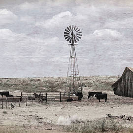 Vintage Country Farm by Judy Vincent
