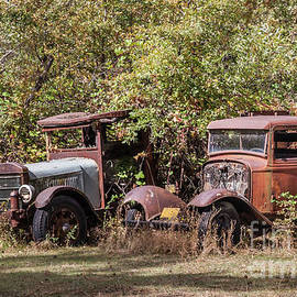 Vintage Rust Bucket Vehicles by Webb Canepa