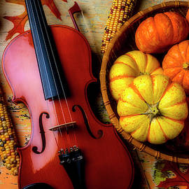Violin And Autumn Pumpkins by Garry Gay