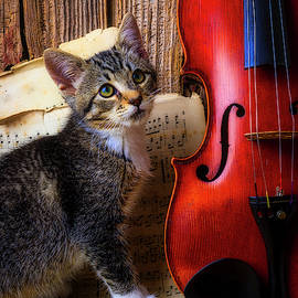 Violin And Kitten by Garry Gay