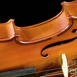 Violin close-up side on black by Gregory DUBUS
