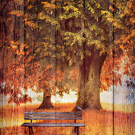 Waiting for You in Autumn in Wood Textures by Debra and Dave Vanderlaan