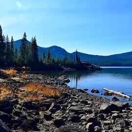 Waldo Lake in Autumn by Dana Hardy