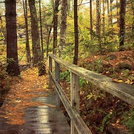 Walking Path In Autumn by Joann Vitali