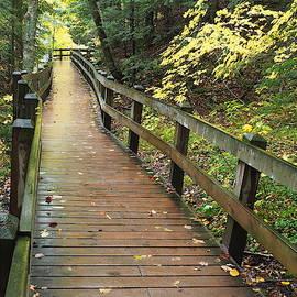 Rosemarie Culver - Walkway to Wagner Falls, Munising, Michigan