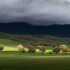 Warner Springs Green Field by William Dunigan