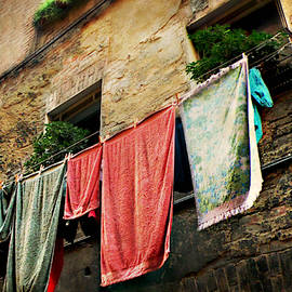 Wash Day In Siena by Micki Findlay