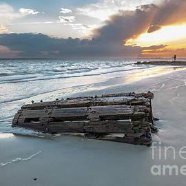 Washed Ahore - Sullivan's Island South Carolina by Dale Powell