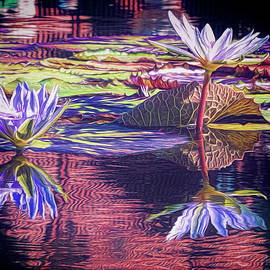 Water Lily 11 by Claude LeTien