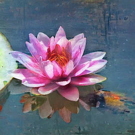 Water Lily by Anna Louise