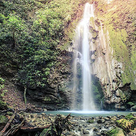 Waterfall in Corcovado National Park by Alexey Stiop