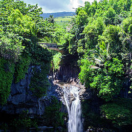 Waterfall on Maui by Anthony Jones