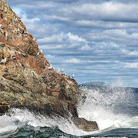 Wave at Acadia National Park by Mike Martin