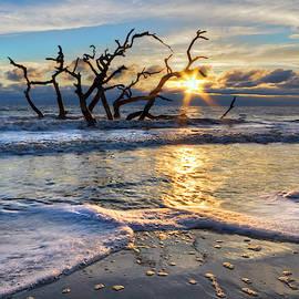 Waves At Driftwood Beach by Debra and Dave Vanderlaan