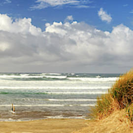 Waves Of Grass And Seashore Panorama by James Eddy