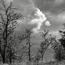 Weather Coming by Dimitris Sivyllis